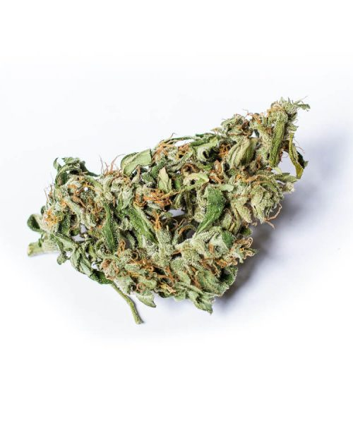buy Amnesia Haze online Worldwide