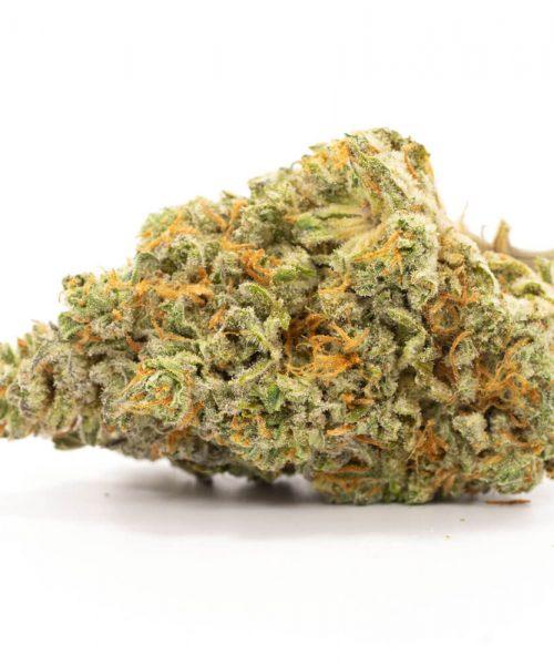 Buy Critical Mass Weed Online Worldwide