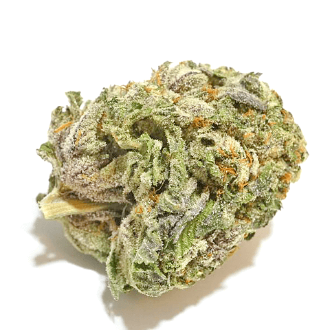 Buy God's Gift Marijuana Online Worldwide