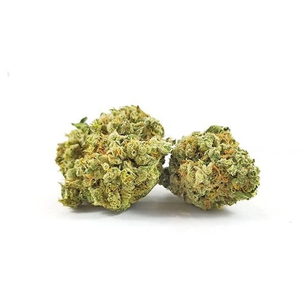 Buy Jack Herer Online Worldwide