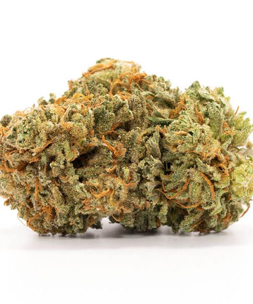 Buy Master Kush Online Worldwide