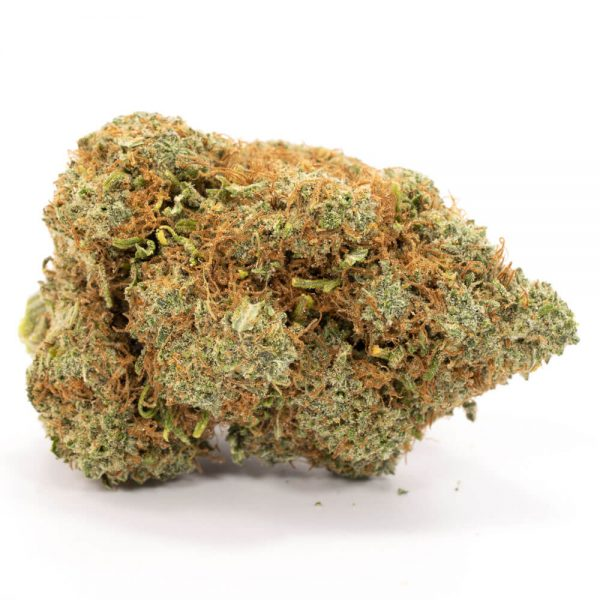 Buy Moby Dick Weed Online Worldwide