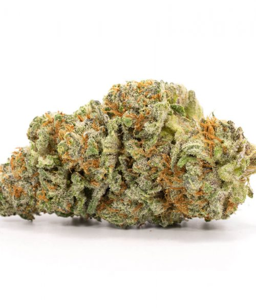 Buy Northern Lights Weed Worldwide
