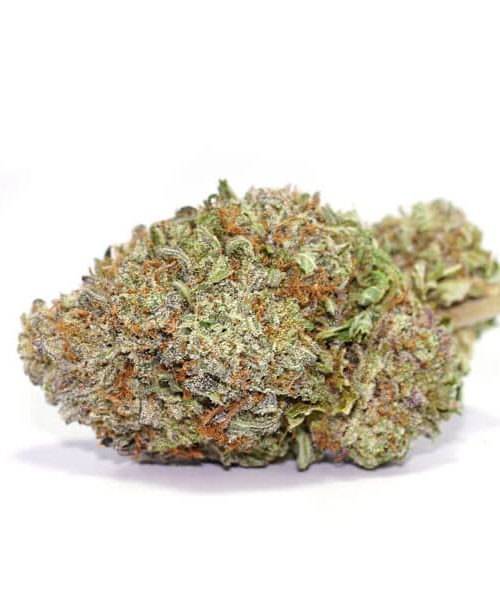 Buy Purple Haze Online Worldwide