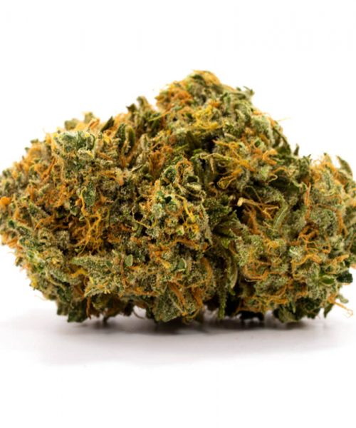 Buy Super Lemon Haze Online Worldwide