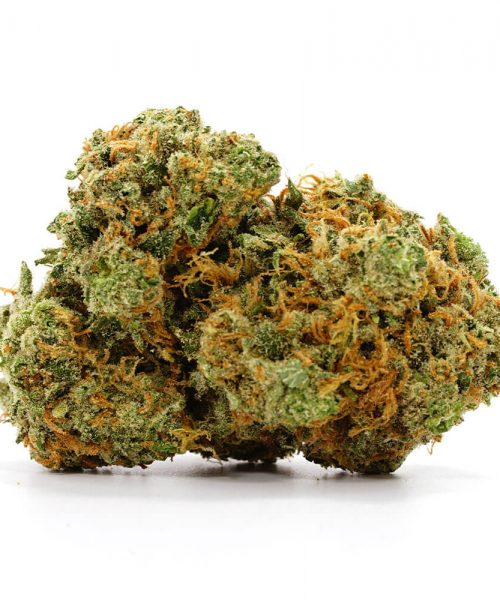Buy Super Silver Haze Online Worldwide