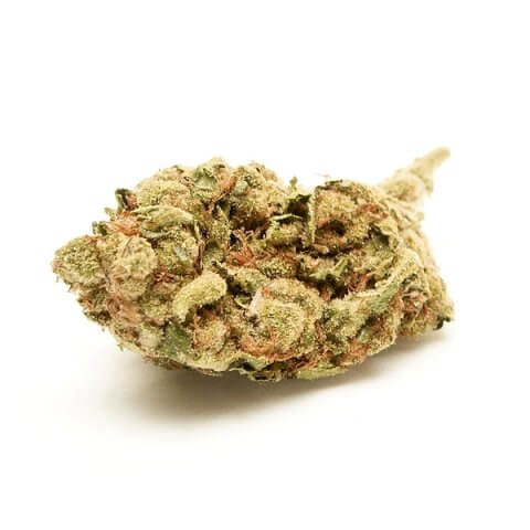 Buy White Widow Online Worldwide