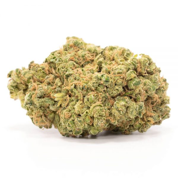 buy Durban Poison Online Worldwide