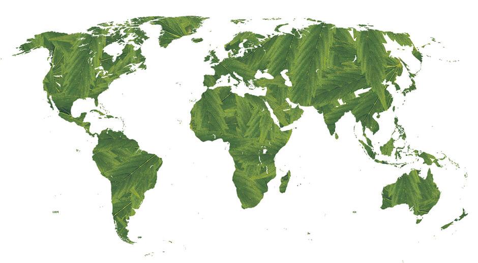 Buy marijuana online with worldwide shipping